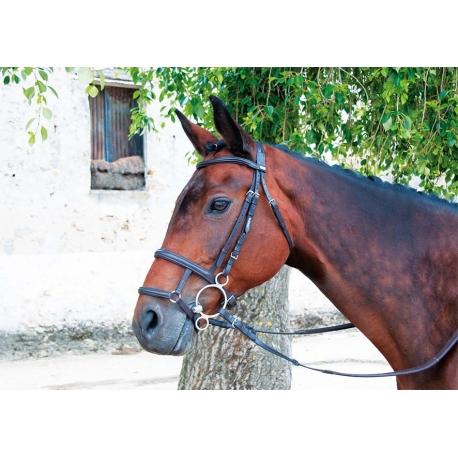 Muserolle mixte fran aise allemande - Only fools and horses bonnet de douche ...
