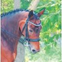 DRESSAGE BRIDLES